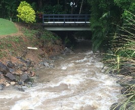 Paradise Palms creeks already carry vast volumes of runoff